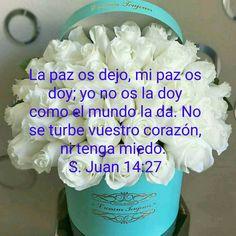 John 14 27, Dios