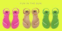 fleeps-fun-in-the-sun.jpg