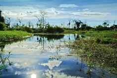 """Welcome to the jungle"" - Amazonas, Peru #beautiful"