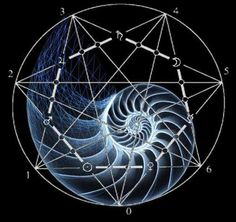 """The Golden Ratio:    """"For since the creation of the world God's invisible qualities—his eternal power and divine nature—have been clearly seen, being understood from what has been made, so that people are without excuse."""" Romans 1:20"""
