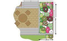 astrantia major 39 ruby cloud 39 garten pflanzen f r vorgarten pinterest astrantia major. Black Bedroom Furniture Sets. Home Design Ideas