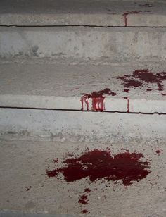 "((Open RP)) ""Oh, fuck,"" I whisper, seeing blood on the concrete. ""Please tell me that isn't mine.""-Savannah"