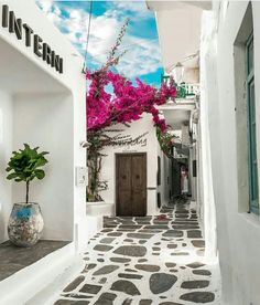 Restaurant Interni~Mykonos~Greece