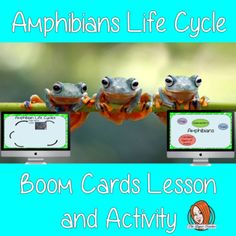 Amphibians Life Cycle - Boom Cards Digital Lesson Planning And Organizing, Google Classroom, Life Cycles, Amphibians, Classroom Resources, Classroom Ideas, Teaching Kids, Activities