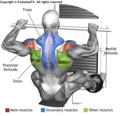 SHOULDERS - LOW PULLEY ROW TO NECK
