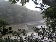 Frenchman's Creek, Helford River, Cornwall
