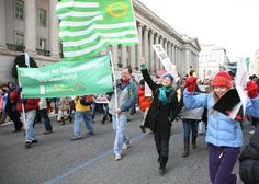 Jill Stein leads the Green Party contingent against the KXL Pipeline in DC, proudly carrying the ecology flag, February 17, 2013. | Flickr - Photo Sharing!
