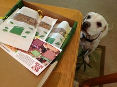 Sorry Daisy, these treats are for me! Healthy mystery box from NatureBox (there's a $ 5 off coupon in my link)