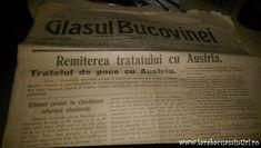 Cernăuți sau ce a fost odată Viena Bucovinei
