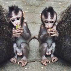 Love u little guy por: indiaward