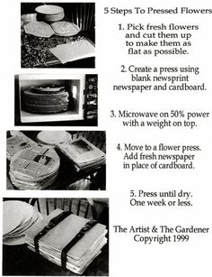 Pressed Flower Craft - Learn How To Press Flowers