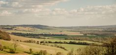 View from White Horse Wood