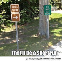 Very Short Run ❤ ℒℴvℯly