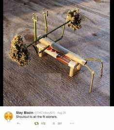 An ever growing collection of marijuana memes, posters, bud porn and general weed smoking, pro-cannabis images. Marijuana Art, Weed Memes, Weed Humor, Medical Marijuana, Cannabis, Weed Art, Stoner Girl, Picture Collection, Ganja