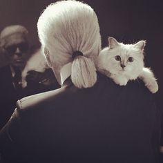 Love this, Karl and his kitty.