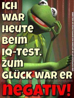 Kermit And Miss Piggy, Lol, Cartoon, Comics, Frogs, Funny, Fictional Characters, Facebook, Ideas