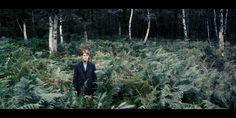 """Lars Von Trier """"Antichrist"""" ( Cinematography: Anthony Dod Mantle)"""