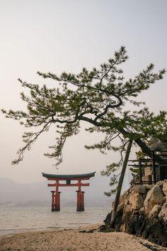 Miyajima Gate, 2014 by Owen Spargo Photo Japon, Japan Photo, Amaterasu, Samourai Tattoo, Beautiful World, Beautiful Places, Torii Gate, Art Asiatique, Miyajima