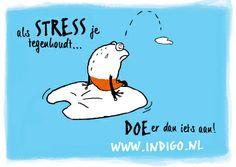 Illustratie voor Indigo van joost@axioma.nl