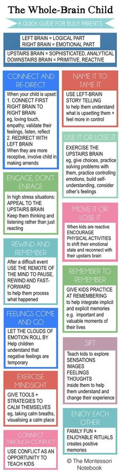 Summary of The Whole-Brain Child - an essential infographic to help you put into practice the 12 strategies from Dan Siegel's best seller The Whole-Brain Child #StepParenting