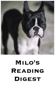 miloReadingDigest