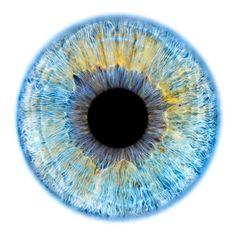 Windows to the Soul - Iris gallery by Fine Art Photographer Edouard Janssens. Eye Texture, Realistic Eye Drawing, Eye Close Up, Eyes Artwork, Blue Background Images, Medical Art, Eye Painting, Human Eye, Eye Photography