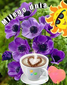 Good Morning, Coffee Cups, Mugs, Tableware, Bom Dia, Buen Dia, Coffee Mugs, Dinnerware, Bonjour