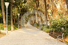 Photo about Beautiful sunny afternoon in Parque de la Alameda Andalucia Malaga Spain. Picture taken in december Image of december, malaga, alameda - 69955548 Malaga City, Malaga Spain, Sunny Afternoon, Andalucia, December, Beautiful, Outdoor Decor, Parks