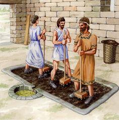 El cultivo del #AOVE fue introducido en la península por los Fenicios en el 1.100 a.C.