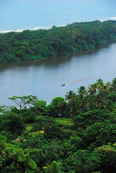 Canales de Tortuguero - Limon - Costa Rica