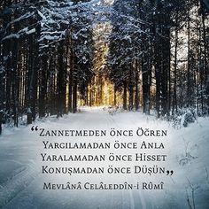 Güzel bir bakış açısı Poem Quotes, Qoutes, Rumi Poem, Daily Mood, Writers And Poets, Sufi, Meaningful Words, Benjamin Franklin, Islamic Quotes