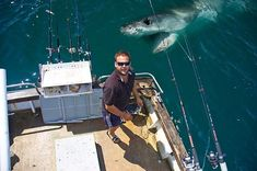 #jawsome shark photobomb!
