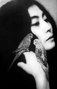 Yoko Ono by Emilie Halpern - birds in color in original photo
