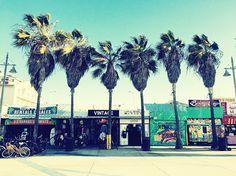 ロサンゼルスに行ったら買ってほしいお土産を特集贈り物にもお勧め