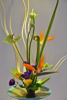 Ikebana Annual Exhibition | Presented by the Ikebana Interna… | Flickr