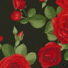 Glamour Quilting Fabric Spaced Roses - Black