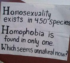La homofobia es real