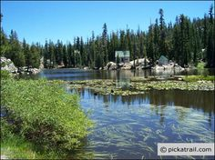 Image detail for -Mosquito Lake in Stanislaus National Forest, California | Pickatrail ...