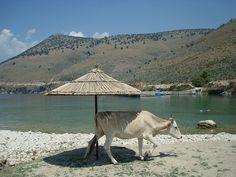 Albanië heeft een verscheidenheid aan toerisme te bieden. Het beschikt over een lange kustlijn voor de nodige zon en zee. Tevens beschikt Albanië over een groot cultureel en historisch erfgoed. Doordat het zich in vroeger tijden bevond tussen de twee grote beschavingen ter wereld, de Griekse en Romaanse, zijn daar overal de overblijfselen nog van terug te vinden. In Albanië waan je je daardoor soms de hele dag in een museum.