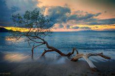 ** - Beautiful pacific cost in Costa Rica.