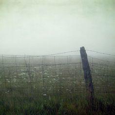 Fog #fog #surreal #surrealism #pale #art #photography