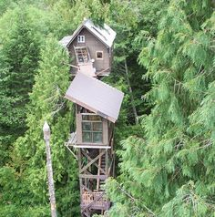 "I think this qualifies more a house in the trees rather than a ""tree house""...but still awesome!"