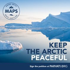The pristine and vulnerable Arctic needs our protection to help keep us cool and our oceans healthy! Have you signed the petitions yet? Please sign and share with all your friends.