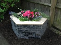 A small hexagonal gabion planter with wood top