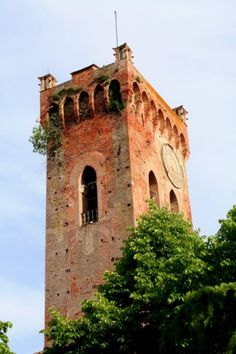 San Miniato (Pisa, Toscana) - Campanile Duomo alias Torre di Matilde