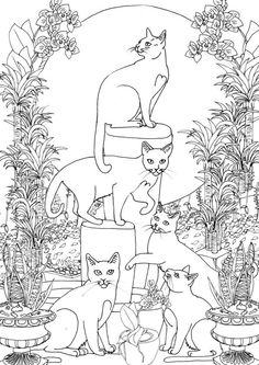 Five Cats In A Garden Colouring Page More