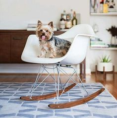 fiberglass rocking chair