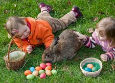 Beloved by children in the UK and US alike, the Easter Bunny is perhaps one of the most recognizable symbols of the spring season for English speakers. But its origins actually trace back to Germany.