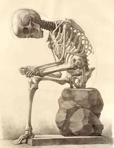 A3 Vintage Style Poster - Skeleton Sitting On A Stone (Picture Gothic Human Art) #ebay #Home & Garden