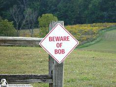 Beware of Bob.............